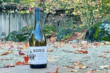 Sosie white wine featured photo