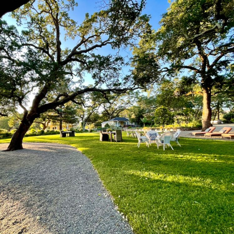 Gardens and grounds at Beltane Ranch inn photo