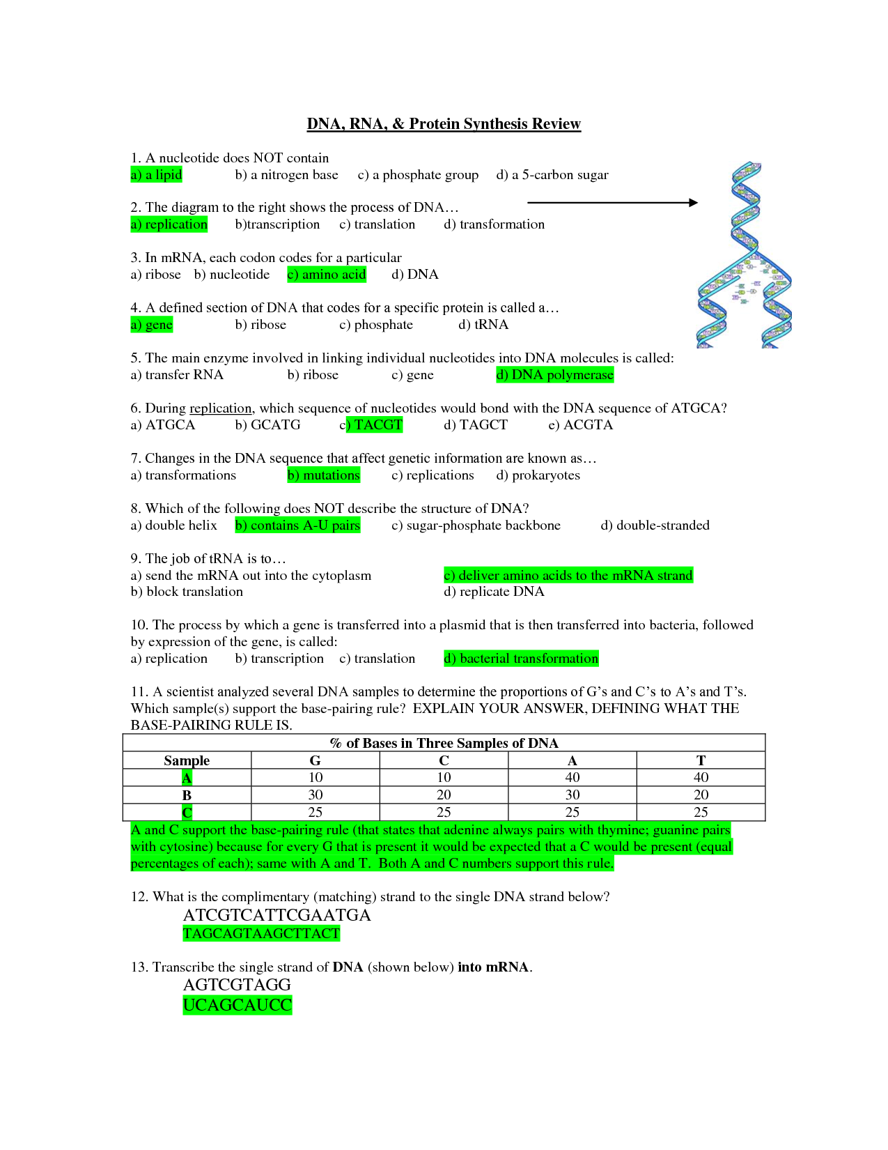 dna replication diagram worksheet 2005 chevy trailblazer wiring rna and protein synthesis essay