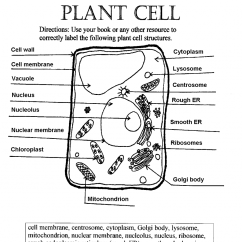 Label Animal Cell Diagram Worksheet Clarion Wiring Plant 1 5