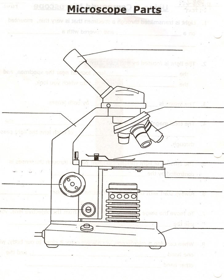 Parts Of The Microscope Quizlet : 5 Parts Of The