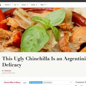 """<span class=""""live-editor-title live-editor-title-21419"""" data-post-id=""""21419"""" data-post-date=""""2016-01-14 12:00:08"""">La fea chinchilla es una exquisitez en Argentina</span>"""