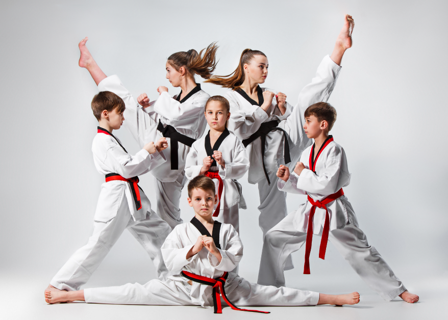 Democrats' Bill in Virginia Would Outlaw Martial Arts Training