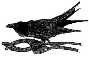 raven with branch