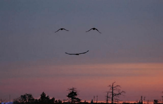 """WHEN MOTHER NATURE SAYS, """"DON'T WORRY, BE HAPPY."""""""