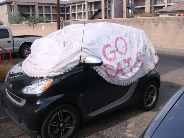 Then, he protected the interior of his car.