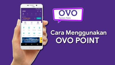 Kegunaan OVO Point dan Cara Menggunakan OVO Point