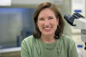 Dr. Anne Stevens