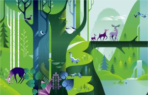 Forest Zone Art 2