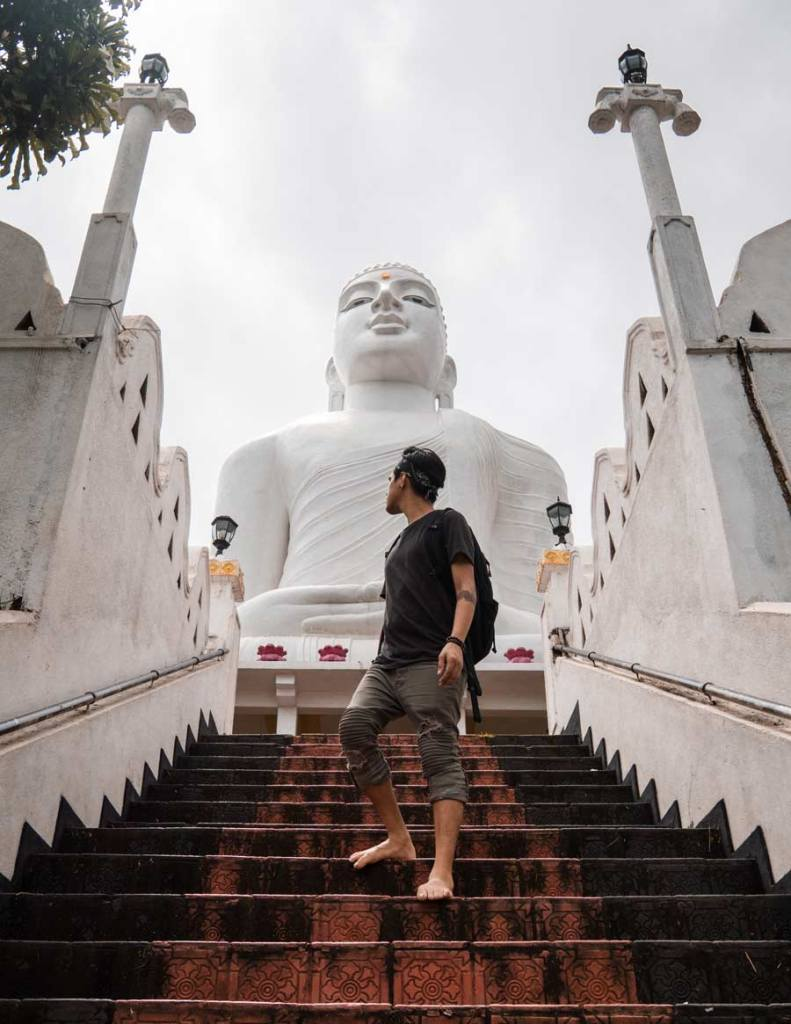 Transcendence From This World: Buddhism and the Baha'i Faith