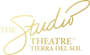 TheStudioLogo_Gold