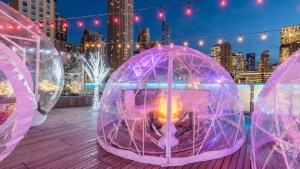 Dine in a Igloo Right Here in Central Florida