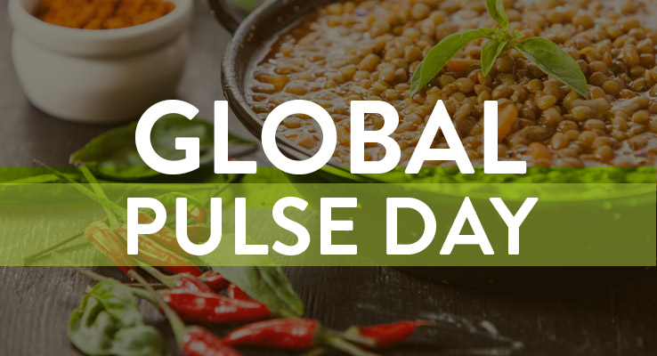 Celebrate Global Pulse Day