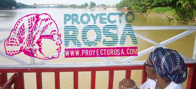 proyecto Rosa