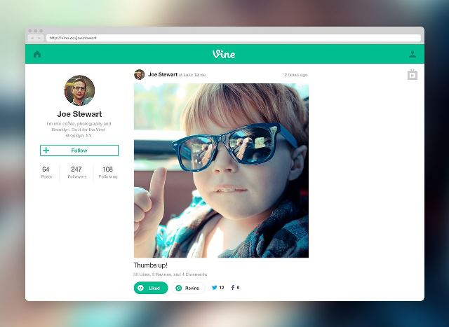 vine_web_profile