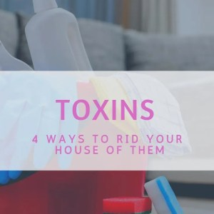 toxins, cleaning products, rid your house of toxins
