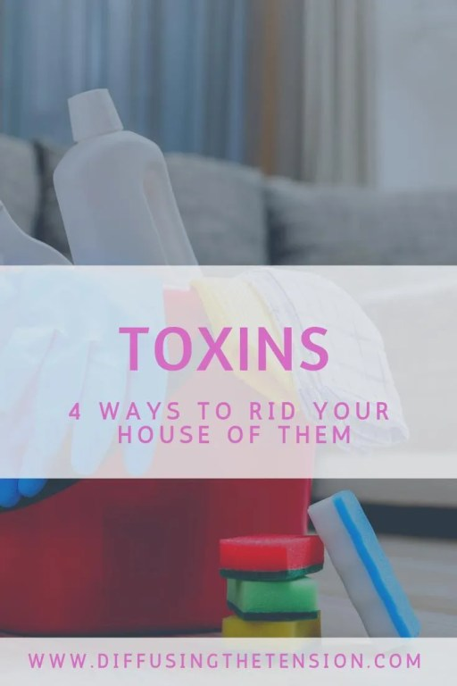 toxins, cleaning products, rid your house of toxins, 4 Ways to Rid Your House of Common Toxins