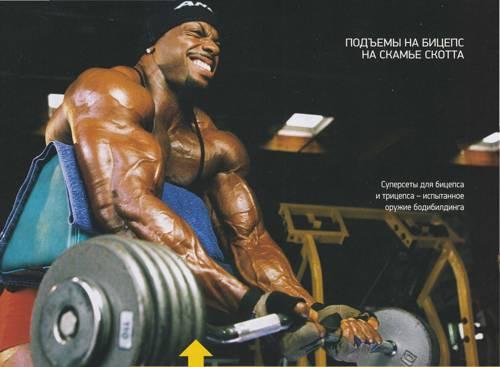 podem na biceps na skam'e skotta