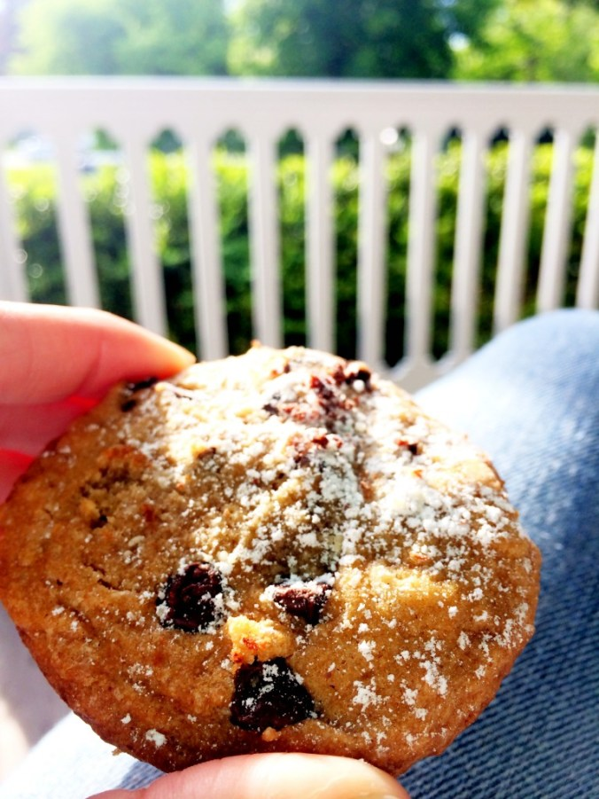 chocolate chip cookies at the hedges inn 2