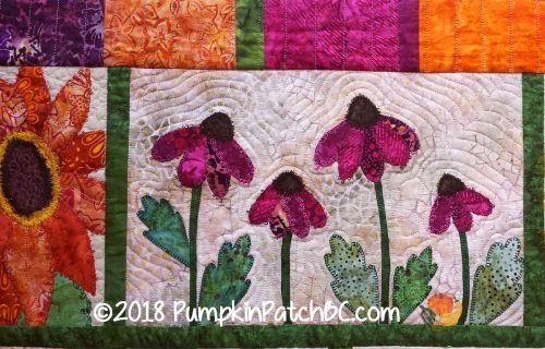 Echinacea Detail