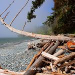 Sandcut Beach Vancouver Island BC