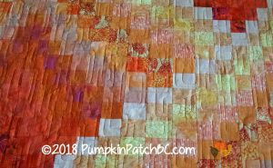 http://pumpkinpatchbc.com/wp-content/uploads/2018/10/Twist-and-Turn-Bargello-Detail-1.jpg