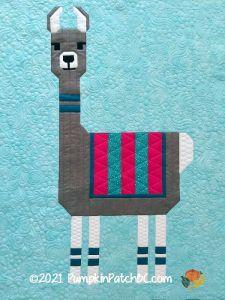Llama Detail 1