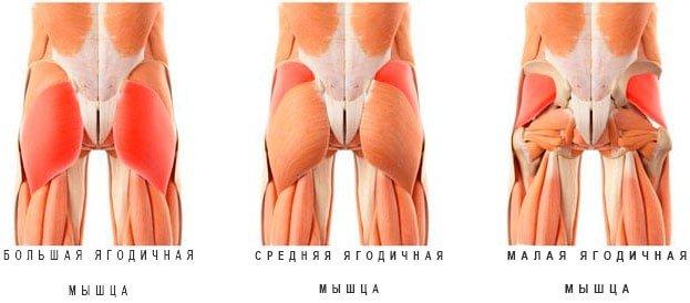 de ce rănește articulația din fese