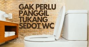 cara mengatasi wc mampet