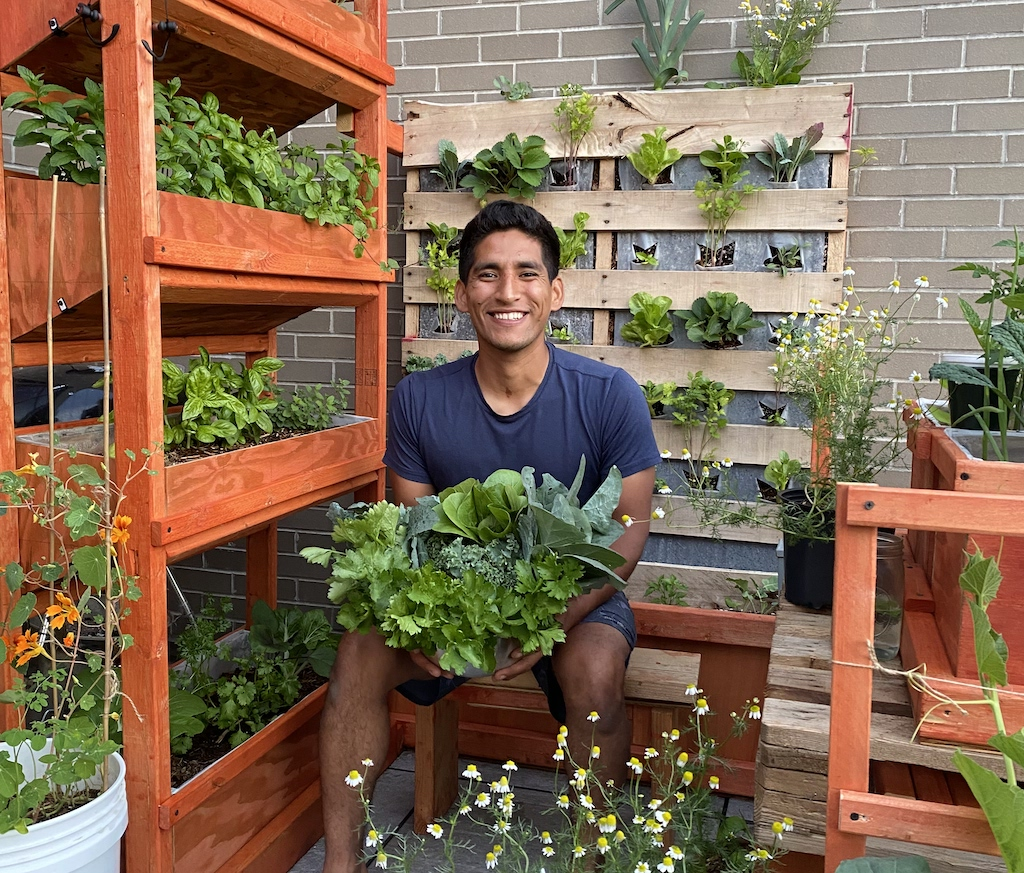 As the Pandemic Continues, Urban Gardening Is Growing on New Yorkers