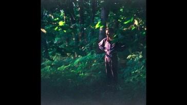 Vilde – Holograms