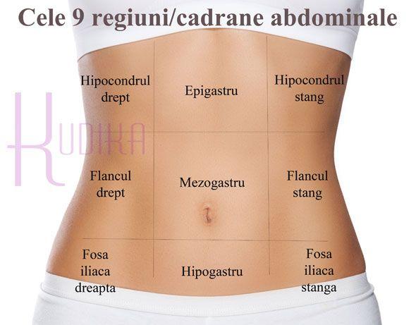 regiuni abdominale