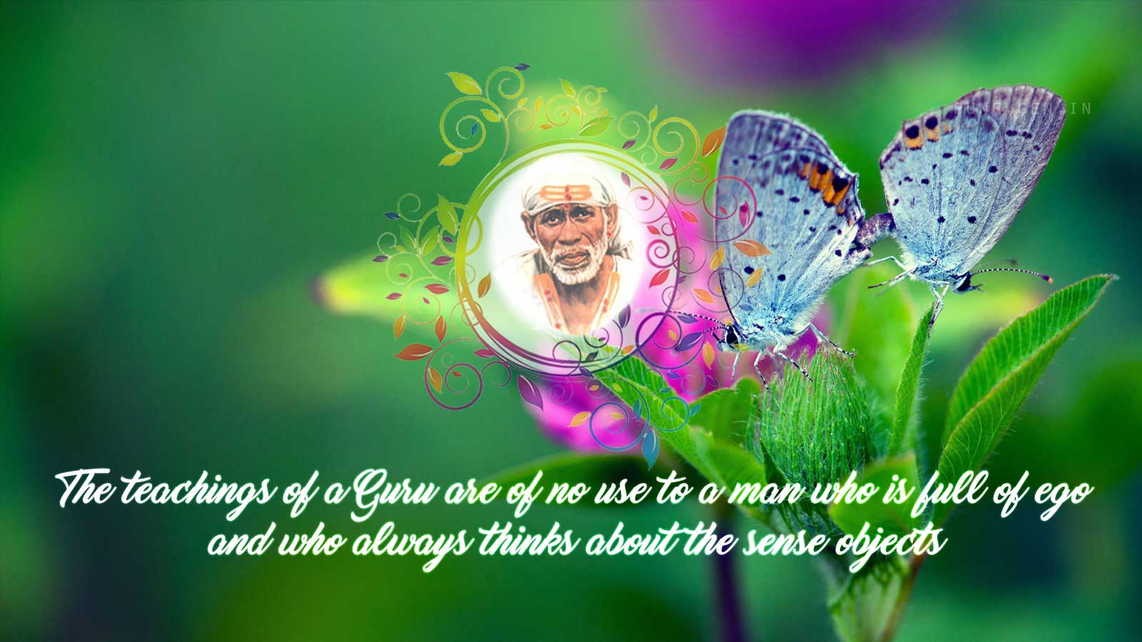Sai Baba Teaching's : The teachings of a Guru…