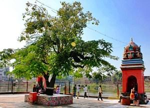 Amriteshwar Temple