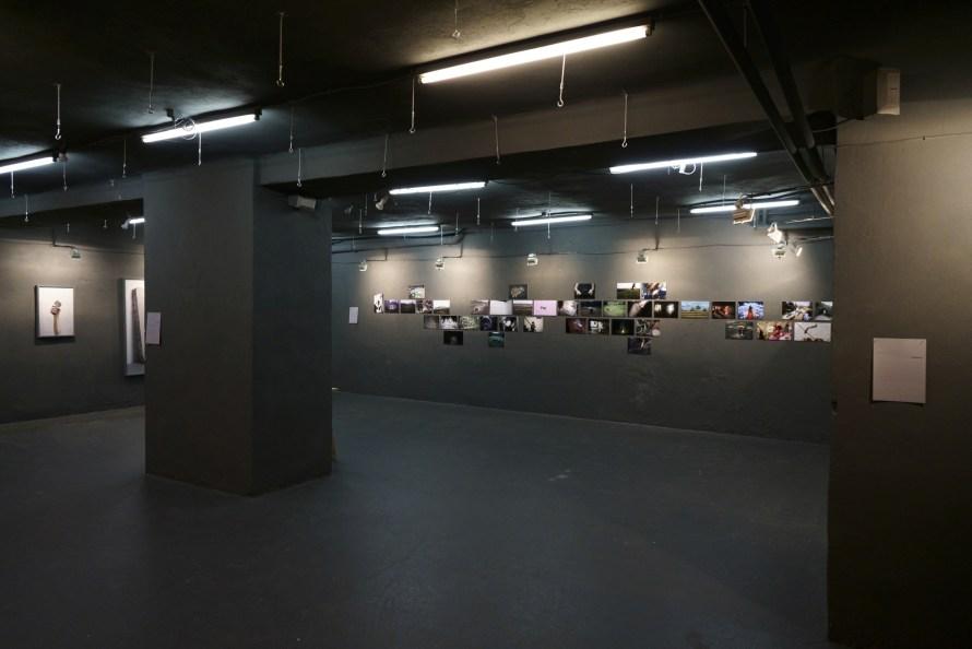 RIPPL Fotográfia MA 2019, diplomakiállítás, enteriőr. Fotó: Punkt