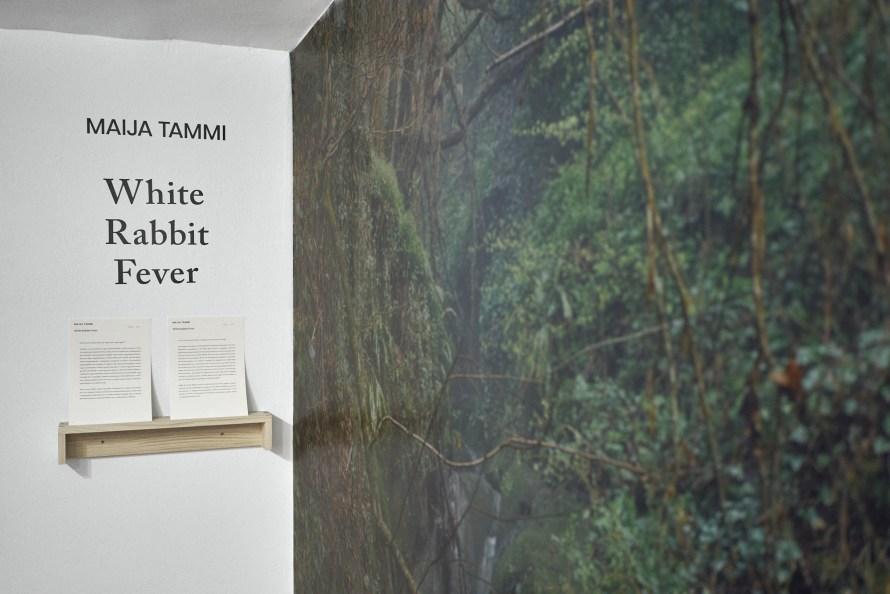 Maija Tammi: White Rabbit Fever, enteriőr. Fotó: Kiss Imre