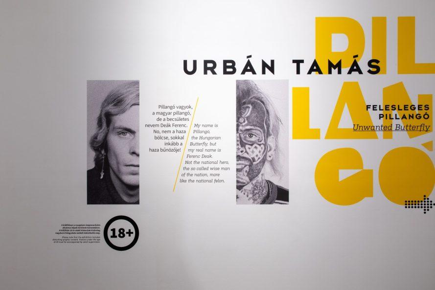 Installáció Urbán Tamás kiállításából. Fotó: Capa Központ