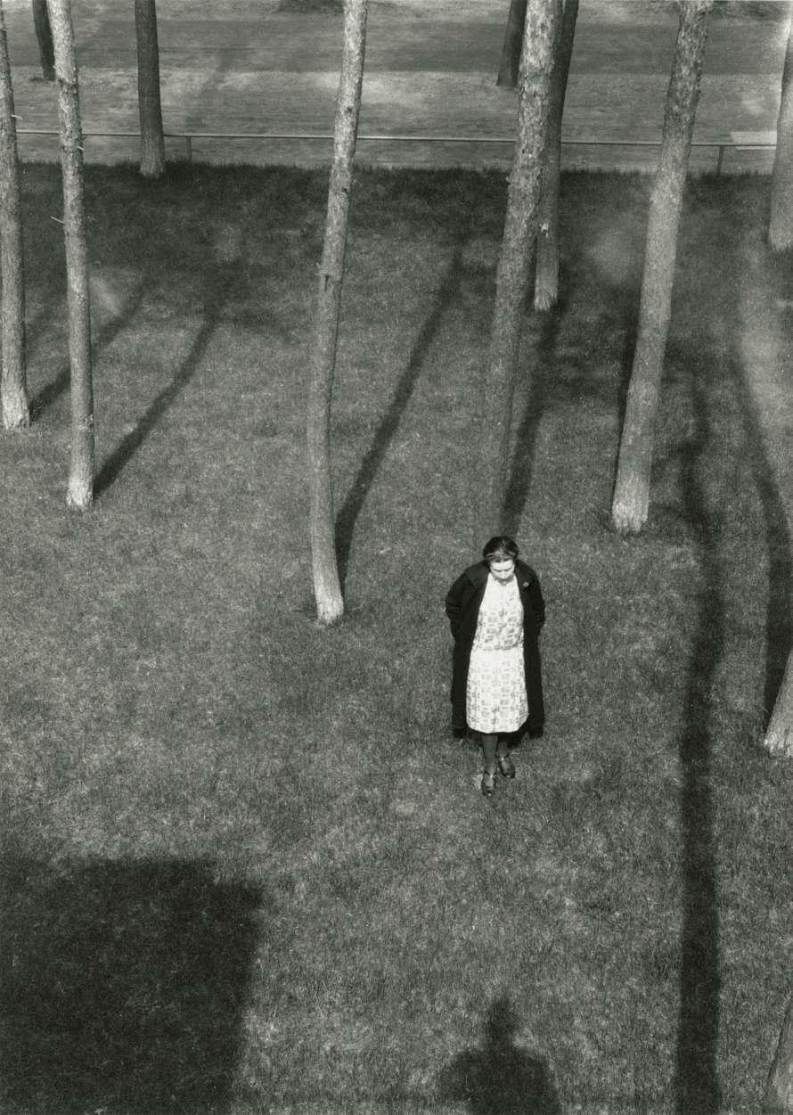 László Moholy-Nagy: Lucia Moholy among the trees of the Meisterhäuser, Dessau, ca. 1920/1995, gelatin silver print