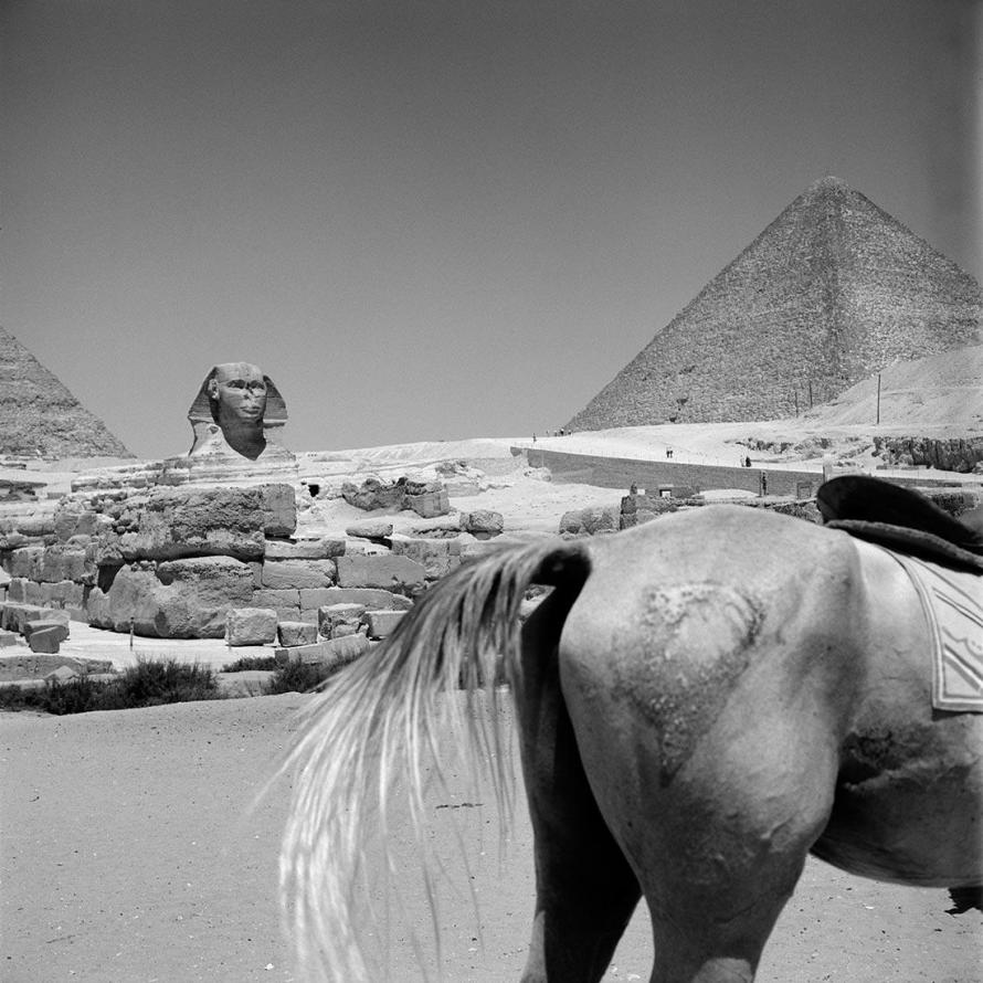 Fotó: Vivian Maier: The Sphinx of Giza and the Pyramid of Khufu, 1959. Egypt © Estate of Vivian Maier, Courtesy Maloof Collection and Howard Greenberg Gallery, New York