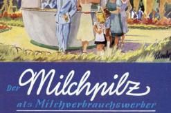 Milchpilz_Bregenz_03