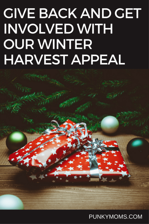 Give back this year with our Winter Harvest. We are organizing our Punkies to buy one more thing and help donate to a local charity.