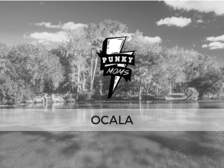 Come and find out about the Ocala area and plan local meets with alternative parents. Share meetup info & get to know your awesome locals in Florida.
