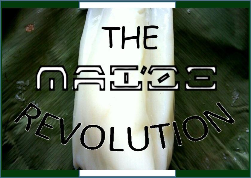 The Maize Revolution
