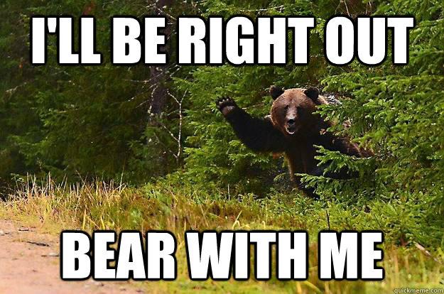 bear with me bear pun