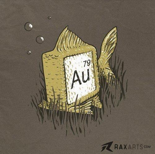 gold fish visual pun