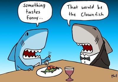 Tastes funny, clown fish pun