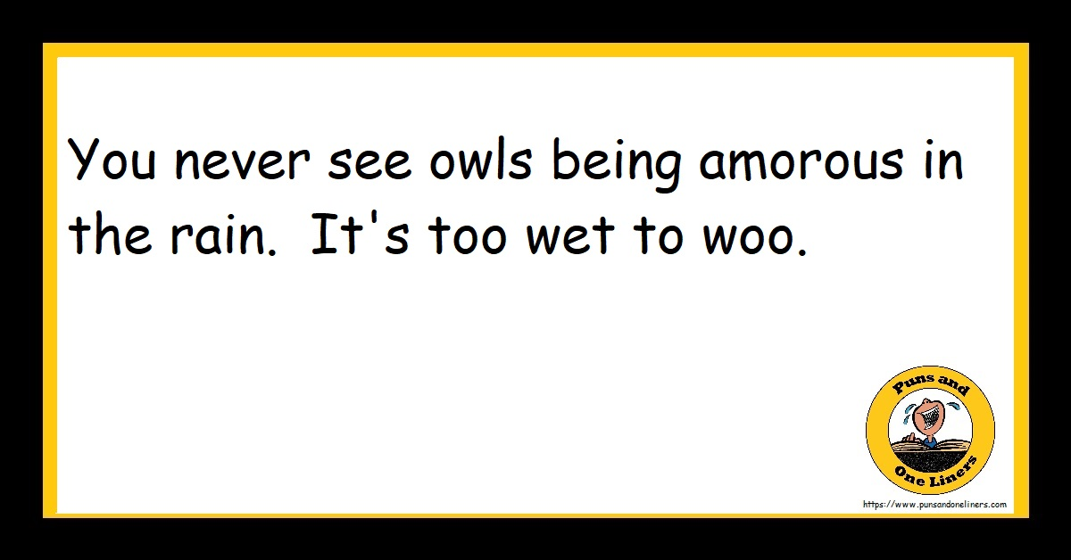 You never see owls being amorous in the rain. It's too wet to woo.
