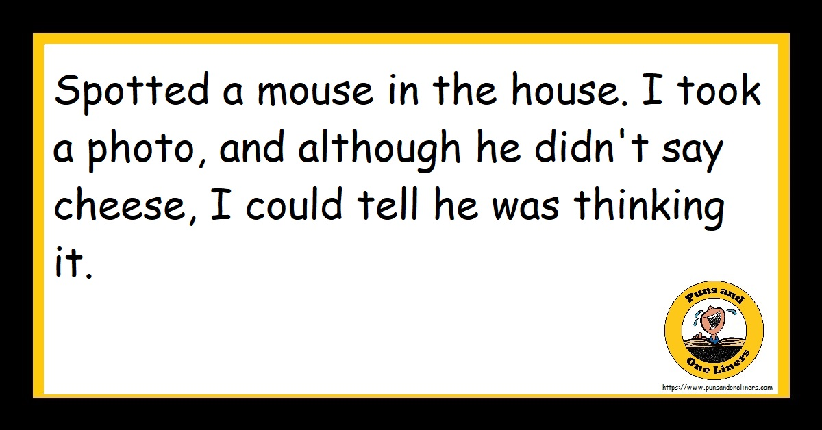 Spotted a mouse in the house. I took a photo, and although he didn't say cheese, I could tell he was thinking it.
