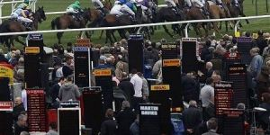 Bookmakers Race Course UK Punters Horse