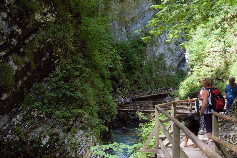 Percorso obbligato a Vintgar sulla passerella in legno sopra il fiume
